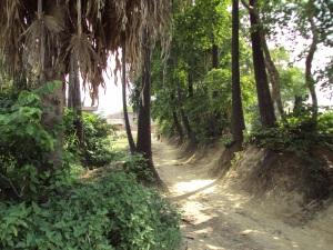 Another Road of Sohagara Village
