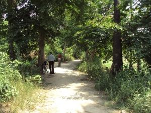 Main Road of Sohagara