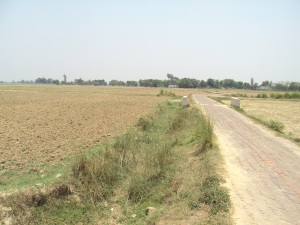 My land in Bishunpura village in Bihar, village is seen in the foreground