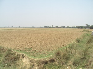 My land in Bishunpura Village of Bihar , village is being seen in the foreground