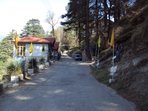 Road From Naggar Castle to Roerich Memorial