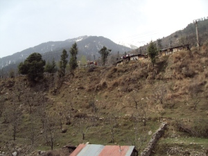 Backside View from My Room in Hotel Quality Inn - Manali