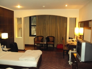 My Room in Hotel Quality Inn - Manali